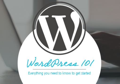 Wordpress 101 - AMPED creativ